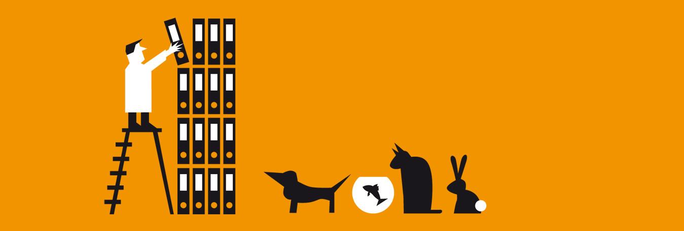 intuitive Software für Tierärzte