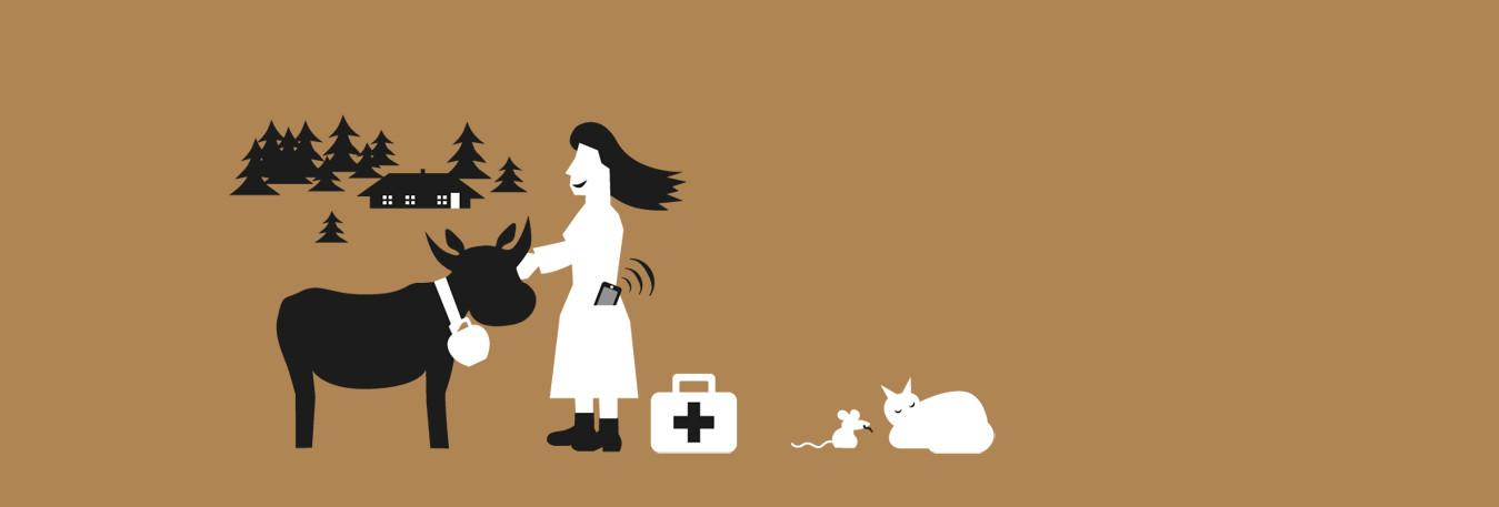 Webbasierte Tierarzt Praxis Software