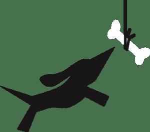 Flexible Tierarztsoftware inBehandlung