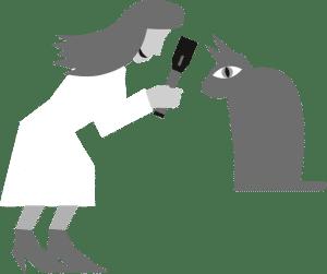 Individuell anpassbare Tierarztsoftware, inBehandlung
