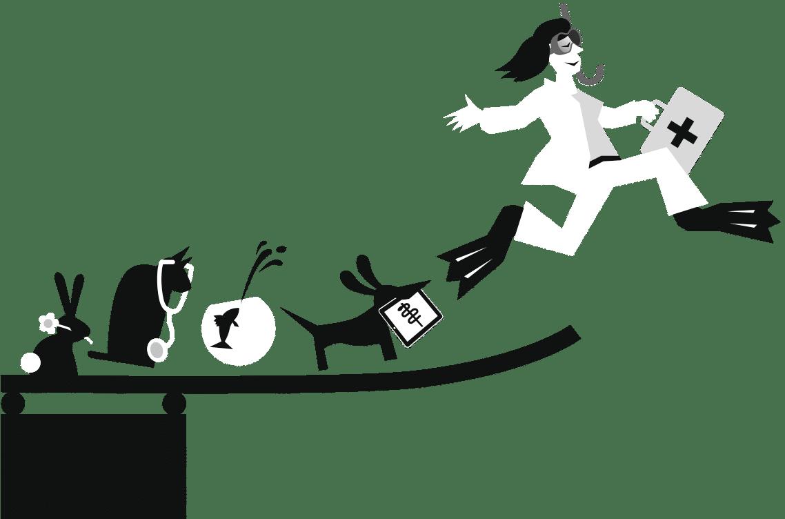 Tierarztsoftware für Praxisgründer, inBehandlung