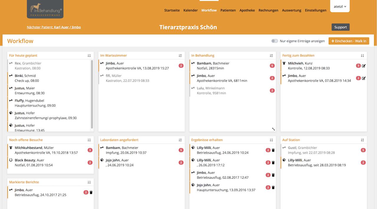 Workflow-Ansicht, Tierarztsoftware inBehandlung