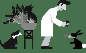 inBehandlung Tierheilpraktiker